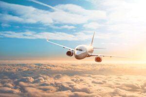 Volo aereo sicuro con BCMS Ventur per la prevenzione del birdstrike